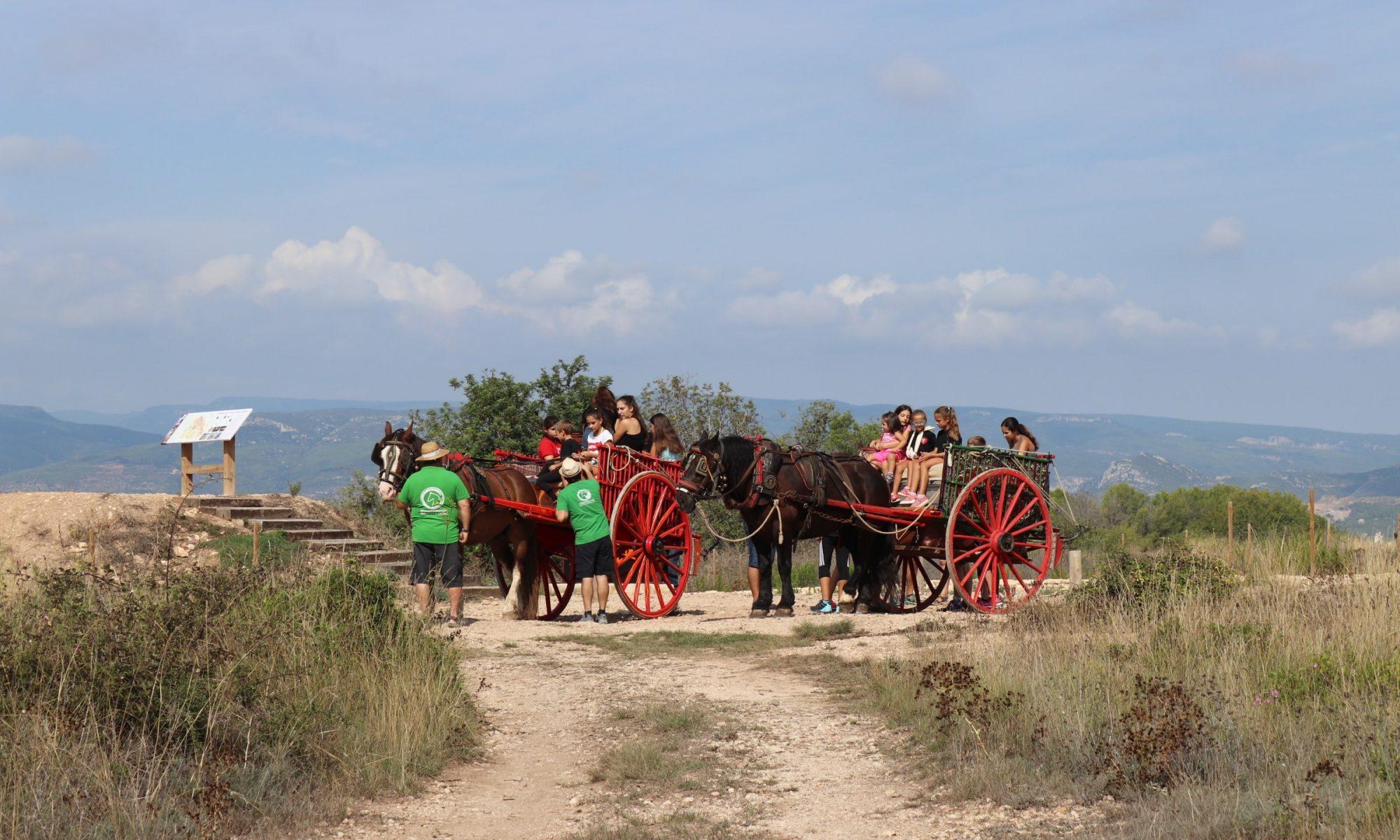 activitats amb nens a Tarragona