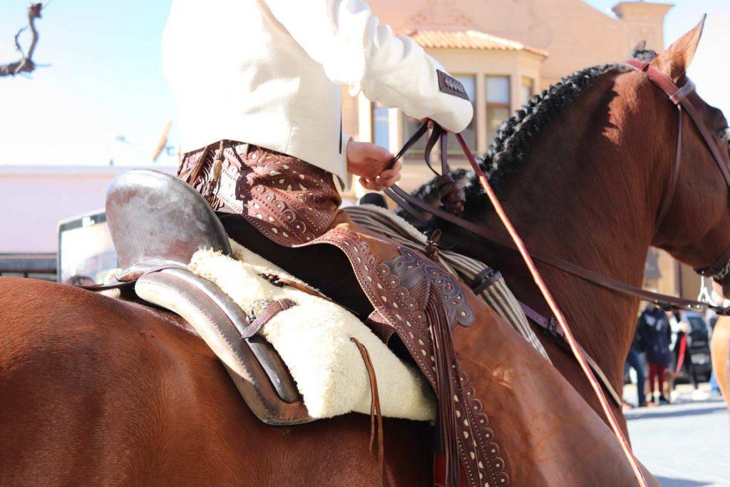 cavall muntat